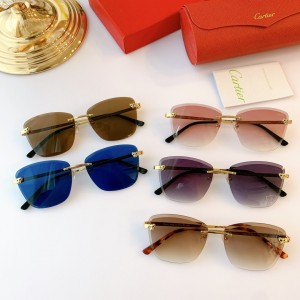Cartier ct0211s Sunglasses ASS050169 Updated in 2020.09.30