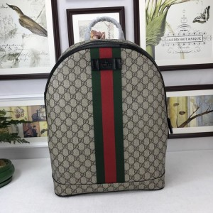 Gucci simple brown back pack GC06BM104